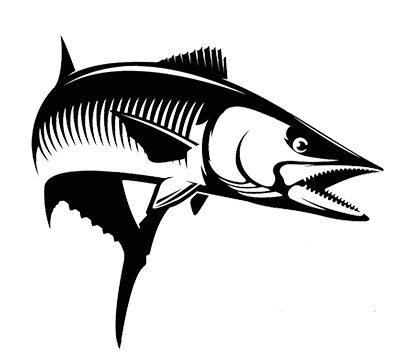 Kingfish-alone.jpg