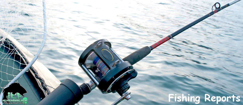 ICF Fishing Reports Slide - iClickFishing.com