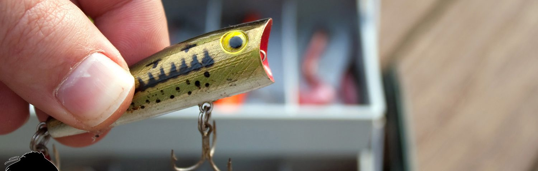 ICF Fishing Tips Slide - iClickFishing.com