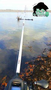 iClickFishing.com - Conway Lake, Arkansas