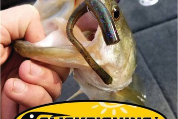 Fishing directory, reports, tips, news, fishing spots, adventures - iClickFishing.com