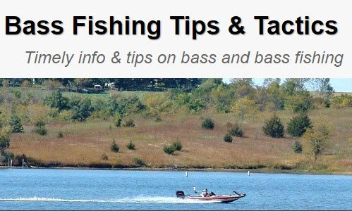 Bass Fishing Tips & Tactics