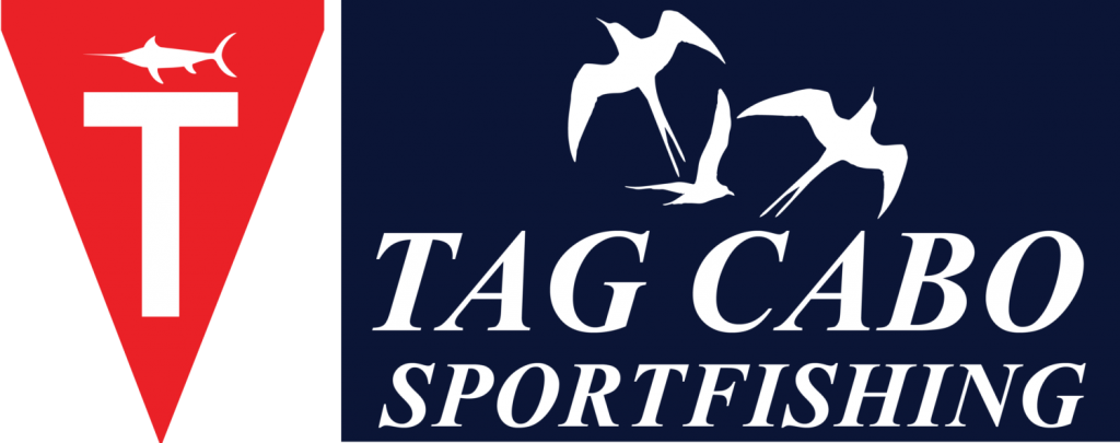 cropped-Tag_Cabo_Logo_Concepts_1.2.png